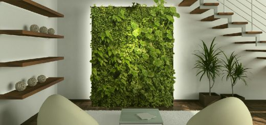 mur-vegetal-interieur