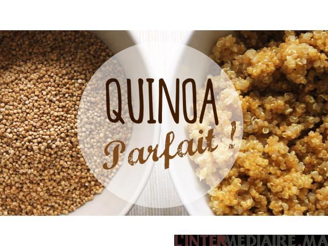 Quinoa bio en gros