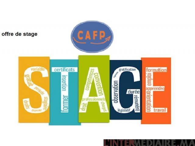 Stage et Formation  Pratique en  Infogra