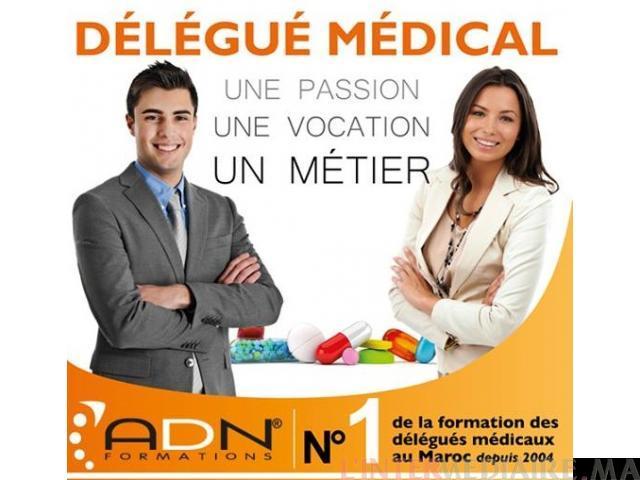 Formation / Recrutement Délégué Médical