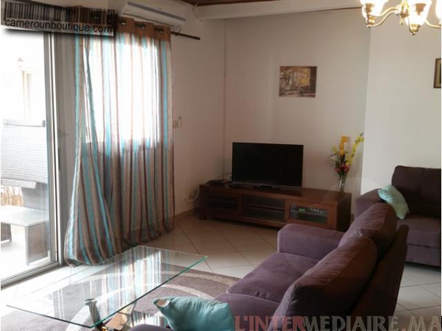 appartement meublé 3 ch 2 s  bourgogne