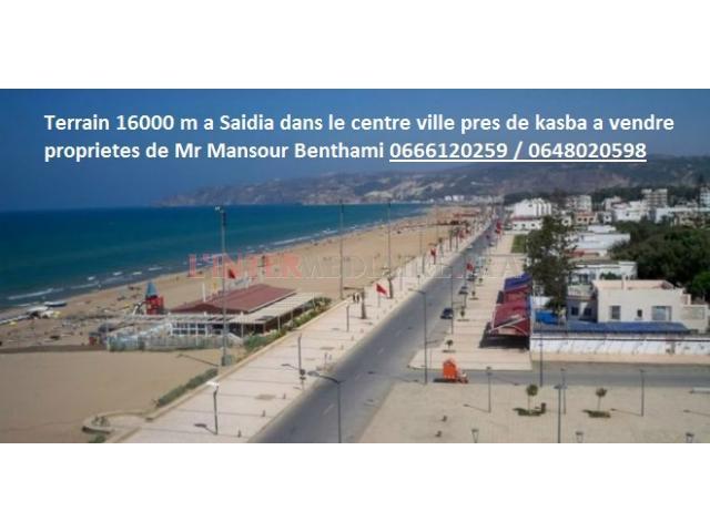 Terrain 160000 m2 a saidia a vendre