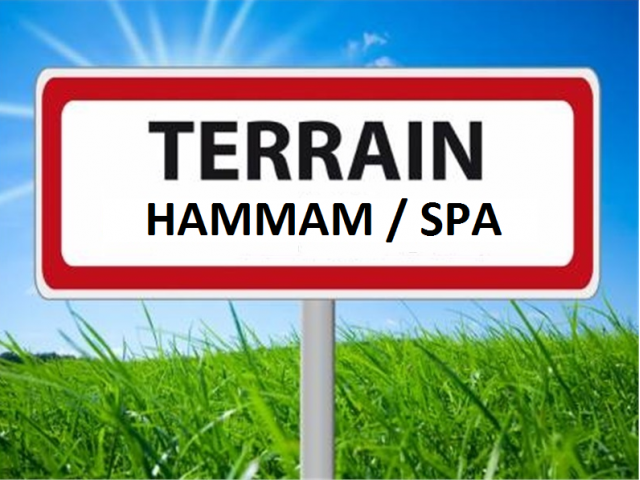 Lot terrain Hammam SPA azemmour