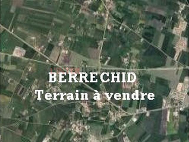 BERRECHID ,  Terrain à vendre