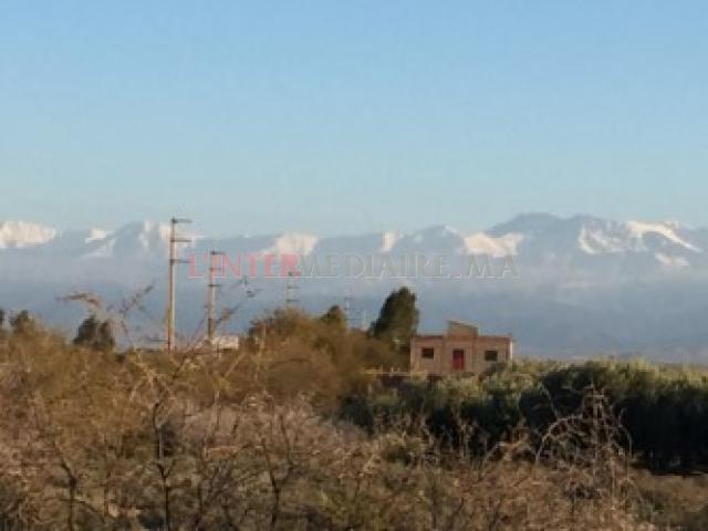 Terrain Région de Marrakech