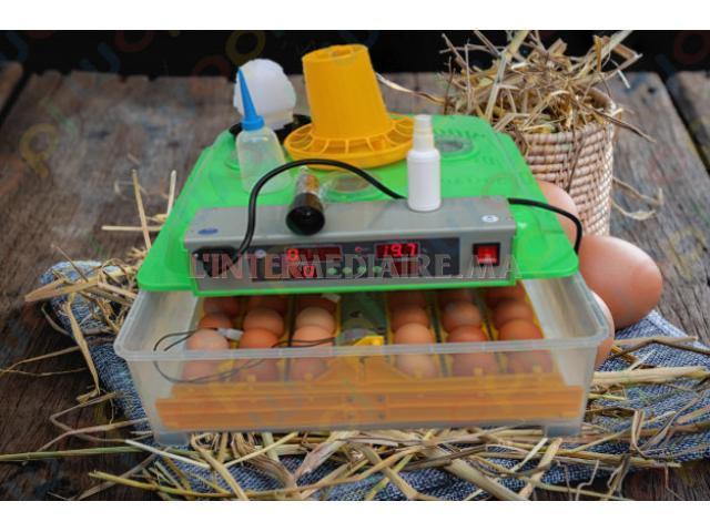 حاضنة تفريخ البيض الصناعي التلقائي 48 بي