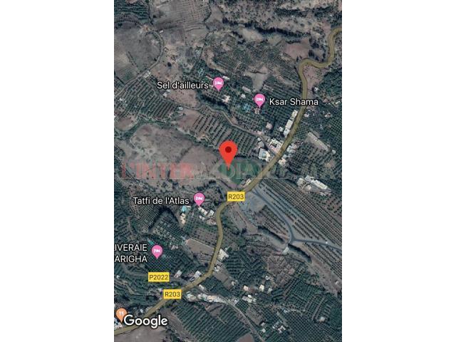 terrain pour projet route de Tahnaoute