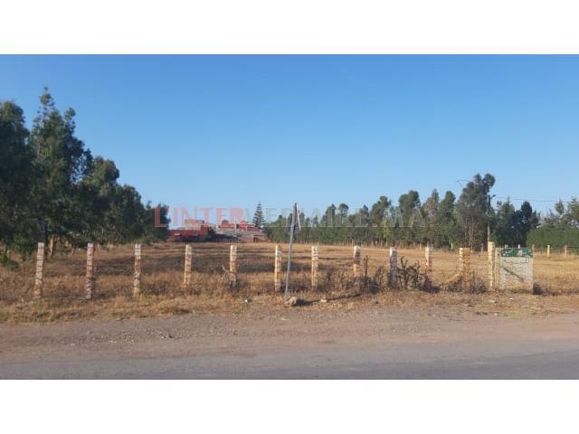 terrain agricole a vendre