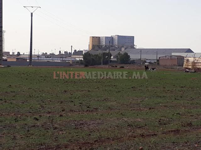 Vente terrain 18ha Casablanca