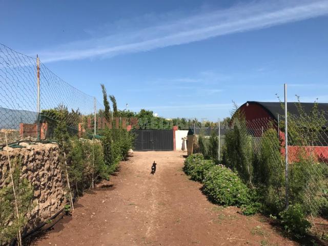 terrain titré  maison campagne Azemmour