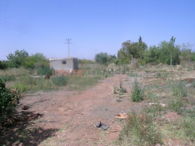 Terrain à vendre bordure de route ourika