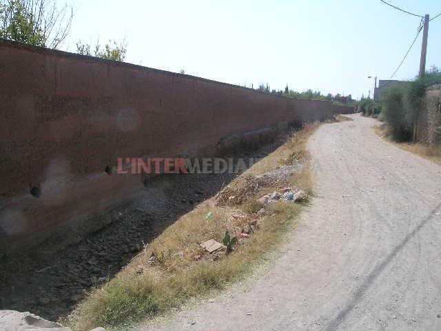 Terrain à vendre 2 ha route de l'ourika