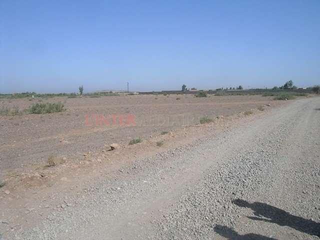 Deux parcelles 1 ha route d'Amizmiz