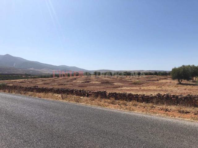 Terrain agricole titré de 1,16ha Fès