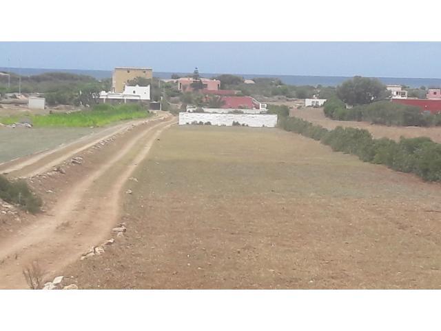Terrains a sidi rehal